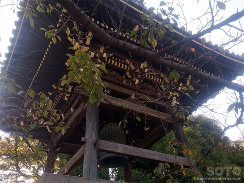 泉岳寺(21)