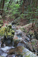 荒滝(1)