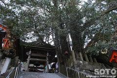 高塚愛宕地蔵尊(2)