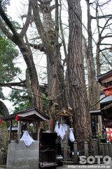 高塚愛宕地蔵尊(6)
