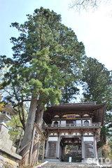 大山寺(楼門)