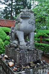 常堅寺(狛犬)