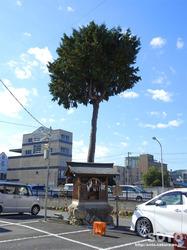 秩父神社参道の町並み(02)