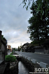 関川の町並み(2)