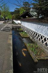 津和野の町並み(1)