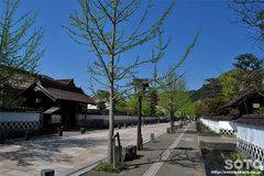 津和野の町並み(2)