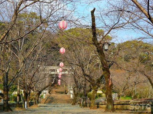 菊池神社表参道