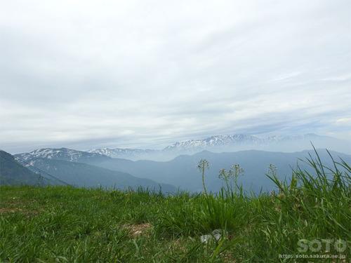 八海山(2)