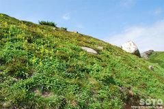 旭岳登山(12)
