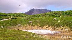 旭岳登山(雪)