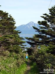 桃岩展望台コース知床口(7)
