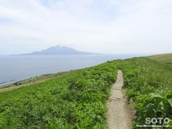 礼文島 桃岩展望台コース(3)