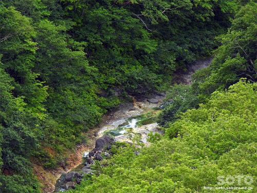 硫黄山(カムイワッカ上流)
