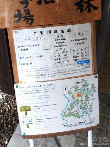 秋田八幡平 大沼周辺(06)