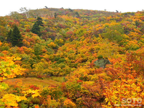 栗駒山(09)