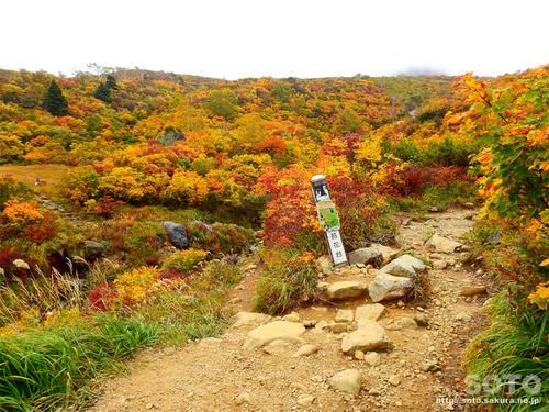 栗駒山(10)