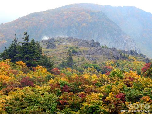 栗駒山(22)