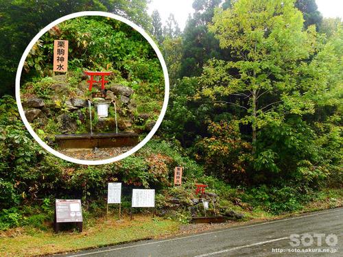 栗駒山(栗駒神水)