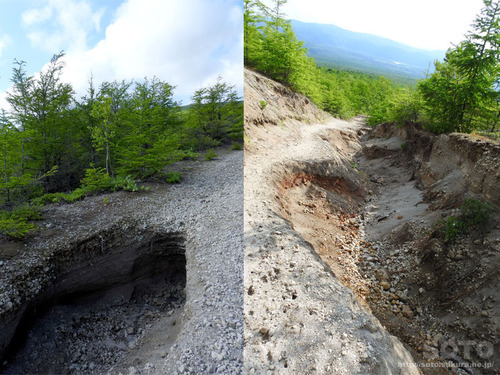 北海道駒ヶ岳(19)