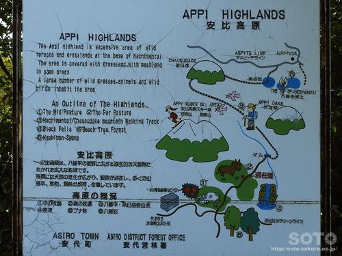 遊々の森(登山マップ)