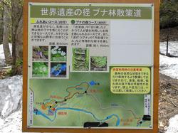 ブナ林道散策(マップ)