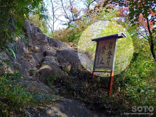 嵩山(登山道03)