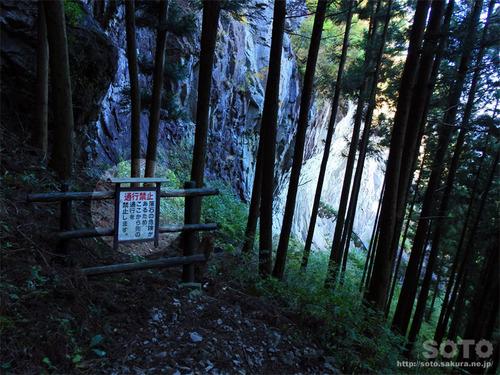 嵩山(登山道11)