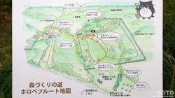 フレペの滝遊歩道(100m2運動)