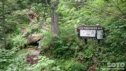 平山登山(2)