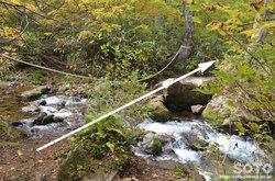 愛山渓沼の平(安足間川を渡る)