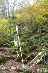 愛山渓沼の平(分岐1)