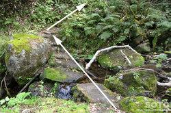 愛山渓沼の平(また川を渡る)