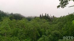 平山登山(6)
