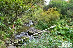 愛山渓沼の平(またまたまた川を渡る)