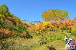 高原温泉沼(紅葉)