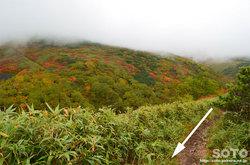 愛山渓沼の平(永山岳登山道の紅葉を眺めつつ)