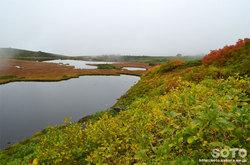 愛山渓沼の平(沼と黄葉)