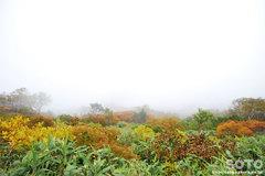秋の黒岳登山(2)