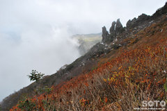 秋の黒岳登山(6)