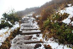 秋の黒岳登山(8)
