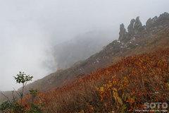 秋の黒岳登山(18)