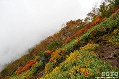 秋の黒岳登山(20)
