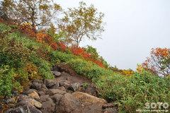 秋の黒岳登山(21)