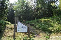 白湯山自然観察路(1)