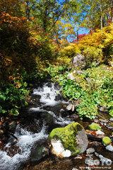 高原温泉沼(16)