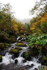 沼の平(アンタロマ川)