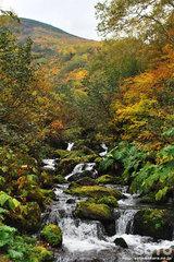 沼の平(昇天の滝)