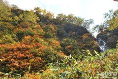沼の平(登山道13)
