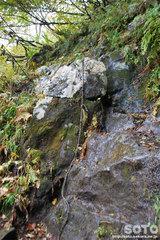 沼の平(登山道16)