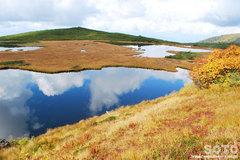 沼の平(鏡沼パノラマ風)